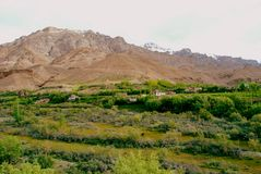 Ladakh mountains and greenery Stock Photo