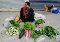 Ladakhi ladies selling fruit and vegetables Royalty Free Stock Image
