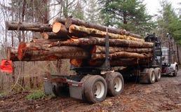 laddad loggad lastbil Arkivbild