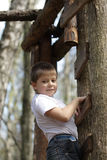 On ladder. Boy in white shirt standing on ladder Royalty Free Stock Photo