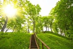 Ladder aan de heuvel, de zomer stock foto