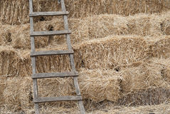 Ladder Against Haystack. An old ladder put against haystack Royalty Free Stock Photography