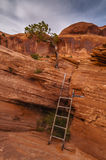 Ladder on a Arch Trail Royalty Free Stock Images
