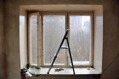 Ladder on a background of old windows Stock Photos