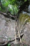 Ladder bamboo Royalty Free Stock Photos