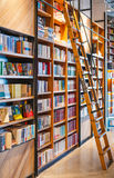 Ladder in Bookstore Royalty Free Stock Images