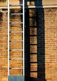 Ladder casting shadow on a worn old stained brick wall royalty free stock image