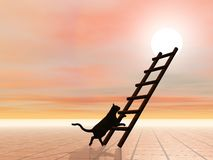 Ladder and cat - 3D render Stock Image