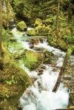 Ladder Creek Royalty Free Stock Photography