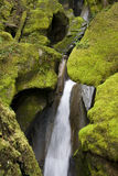 Ladder Creek Falls Stock Photography