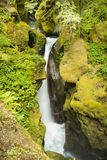 Ladder Creek Falls. Behind Gorge Powerhouse in Newhalem, North Cascades National Park, USA Royalty Free Stock Image