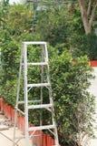 Ladder in een tuin Stock Afbeelding