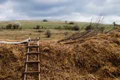 Ladder in the fields under the cloudy sky. The field is left without workers because the rain is coming soon royalty free stock image