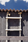 Ladder on fisherman shed Stock Image