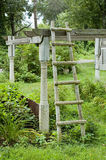 Ladder in Garden. A ladder leans against a trellace in an old garden area Royalty Free Stock Image
