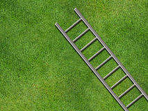 Ladder on grass Stock Photography