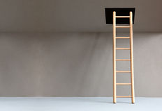 Ladder In Hatch Royalty Free Stock Photo