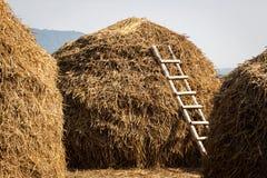 Ladder haystack Stock Image