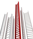 Ladder leader Royalty Free Stock Photography