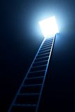 Ladder leading to out Royalty Free Stock Photo