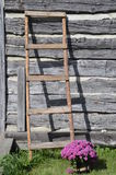 Ladder leans on old log cabin Royalty Free Stock Photos