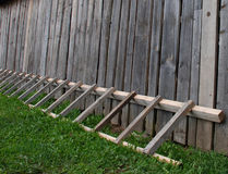 Ladder leans on wall. With grass royalty free stock image