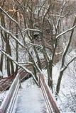 Ladder in park Kolomna royalty-vrije stock fotografie