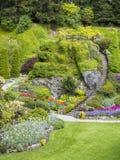 Ladder in Sunken Garden of Butchart Gardens. In the spring royalty free stock images