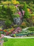 Ladder in Sunken Garden of Butchart Gardens Stock Photo