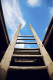 Ladder - the symbol of the career steps Stock Photo