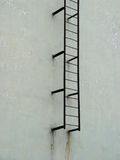 Ladder to heaven. (see more in portfolio Stock Photography