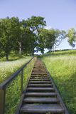 Ladder to the hill Royalty Free Stock Images