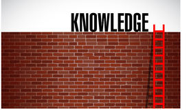 Ladder to knowledge illustration design graphic Royalty Free Stock Photography