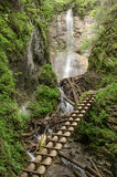 Ladder track, Slovak Paradise. Extreme ladder track in Slovak paradise national park with waterfalls in background royalty free stock photos