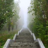 Ladder Upwards In Park Stock Images