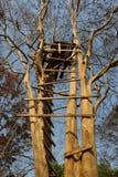 Ladder van een treehouse royalty-vrije stock afbeelding