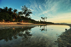 Laddy Ross Beach reflection Royalty Free Stock Images
