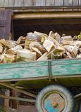 Laden with firewood Stock Photos