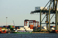 Ladenbehälter am Hafen, Seetransport Lizenzfreie Stockbilder