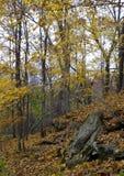 Ladera del otoño Imagen de archivo libre de regalías