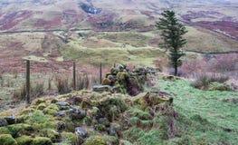 Ladera escocesa rugosa del invierno Fotos de archivo libres de regalías
