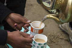 Ladhaki serving tea with milk Royalty Free Stock Photos