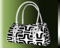 Ladies bag. Black and white ladies bag in color background Royalty Free Stock Photos
