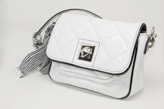 Ladies Bag. Beautiful Accessory. Ladies Bag. Beautiful and Useful Accessory Royalty Free Stock Images