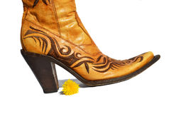 Ladies boots Royalty Free Stock Images