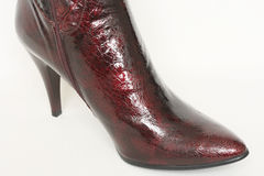 Ladies boots Royalty Free Stock Photo