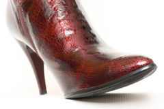 Ladies boots Royalty Free Stock Photography