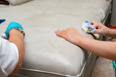 Ladies cleaning leather sofa. With soapy sponge royalty free stock image