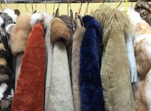Ladies Coats Collection Royalty Free Stock Photos