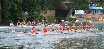 Ladies coxed eights rowing in competition on the river ouse at St Neots Royalty Free Stock Photos